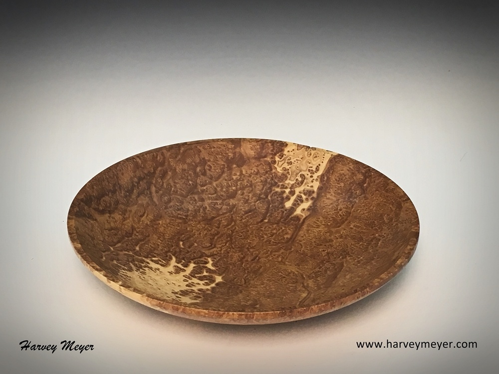 Brown Mallee Burl Shallow Bowl