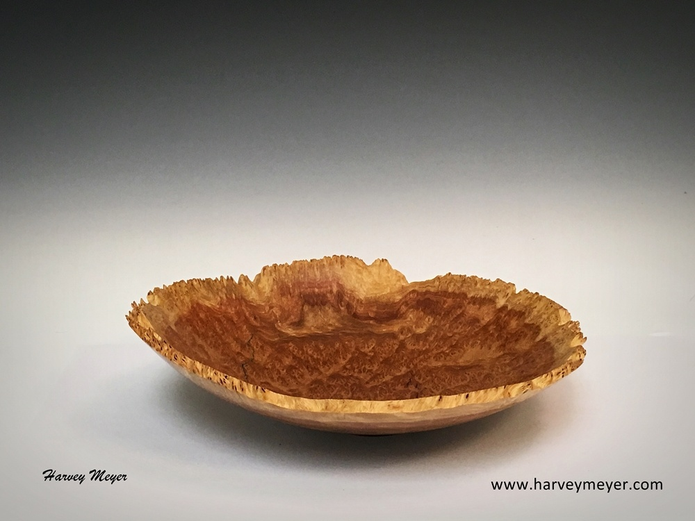 Red Mallee Burl Natural Edge Bowl
