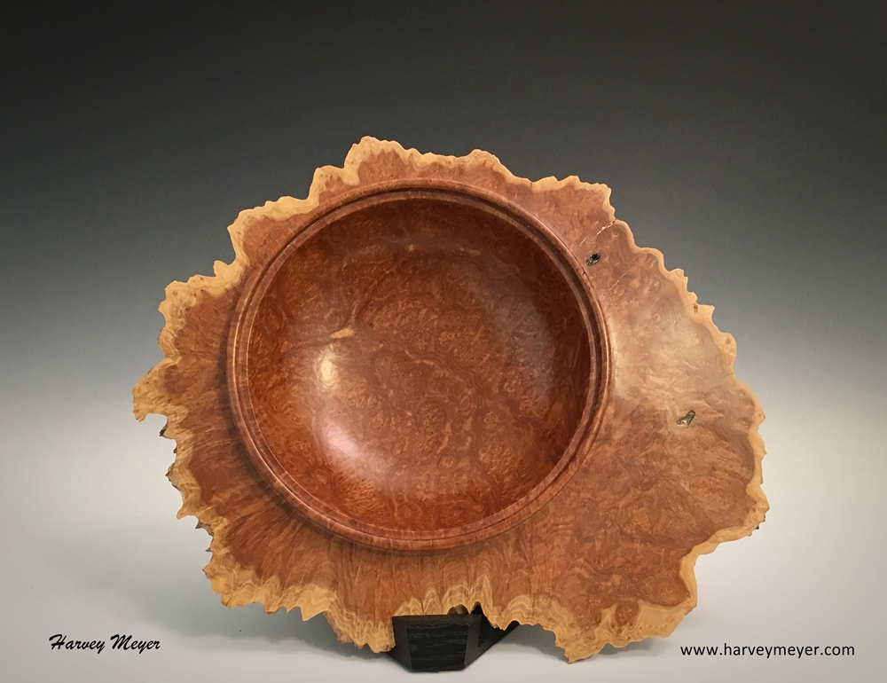 Red Mallee Burl Natural Edge Platter